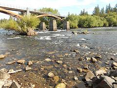 Westlink Bridge at 1500 cfs (6-9-15)