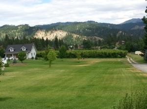 Ski Hill Lawn 2 (6-18-15)